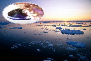 """(Видео) НЛО забележано на Антарктикот преку мапата на """"Гугл"""""""
