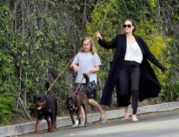 По операцијата, Џоли ѝ подари две зајчиња на Вивиен