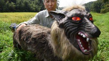 Роботски волци спречуваат напади на мечки во Јапонија (ВИДЕО)