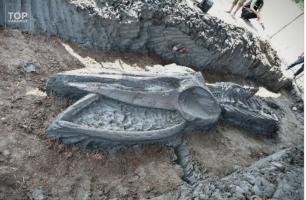 Скелет на кит стар помеѓу 3.500 и 5.000 години пронајден на Тајланд