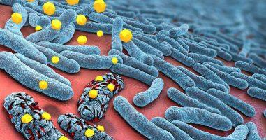 Следната пандемија може да предизвика отпорност на микроорганизмите на лекови