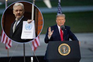Доналд Трамп размислува да го помилува Џулијан Асанж