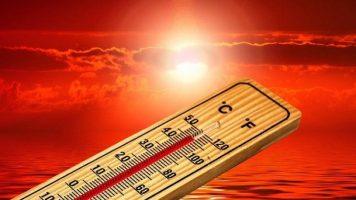 Оваа 2020. е една од трите најтопли години