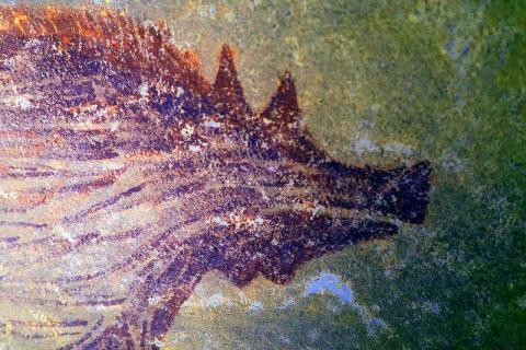 Археолози го пронајдоа најстариот пештерски цртеж во светот (ВИДЕО)