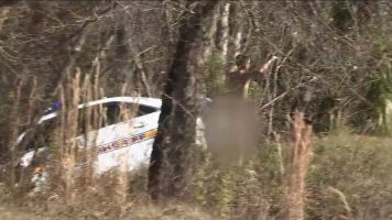 (Видео) Гол маж украл полициски автомобил па се забил во дрво