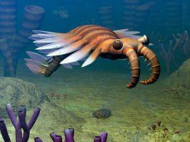 Очи поопасни од заби: Овој бизарен ѕвер владеел во морските длабочини (ВИДЕО)