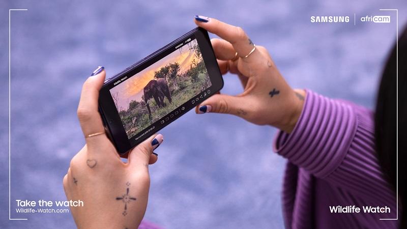 Samsung најави лансирање на новиот амбициозен проект Wildlife Watch