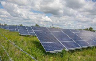 Холандската влада сака да инсталира соларни панели покрај автопатите