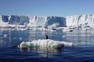 Глобално затоплување: Потврдена нова рекордна температура на Антарктикот